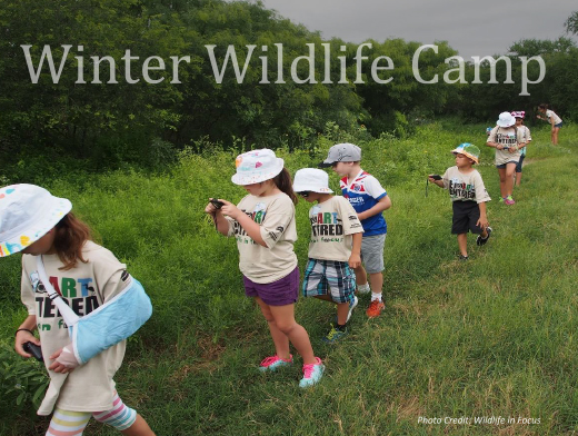 Winter Wildlife Camp!